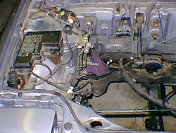 engine_compartment.jpg